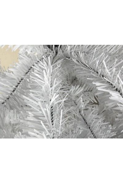 Wildlebend Yılbaşı Beyaz Çam Ağacı Gür Dallar 150 cm