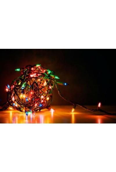 Wildlebend 100 Ledli Renkli Yılbaşı Ağacı Işığı Led Ampül