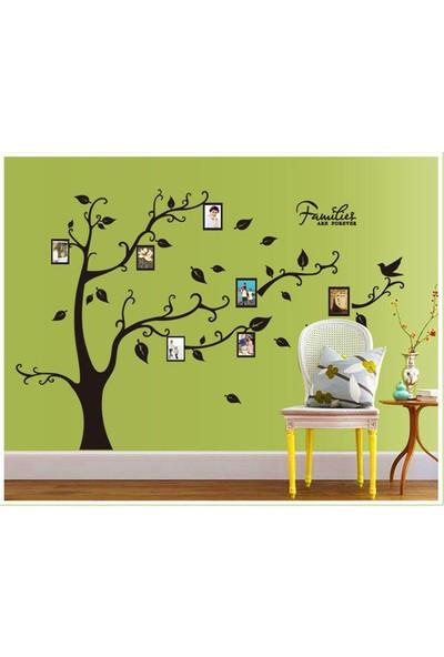 Duvar Sticker Soy Ağacı Şeklinde Resim Fotoğraf Çerçeveli Hediyelik Ev Dekorasyonu Görsel