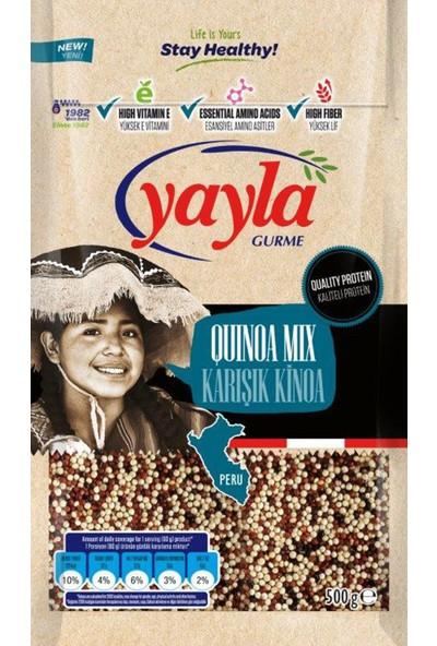 Yayla Gurme Karışık Kinoa 500 gr