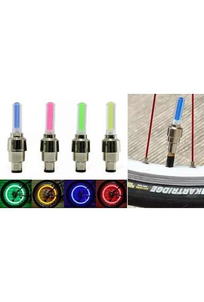 Rugad Hareket Sensorlu Isikli Sibop Kapagi 2Li- Mavı