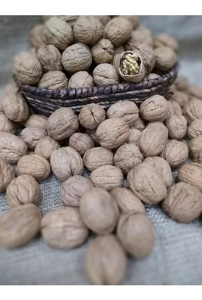 Dilek Kuruyemiş Kabuklu Ceviz 250 gr
