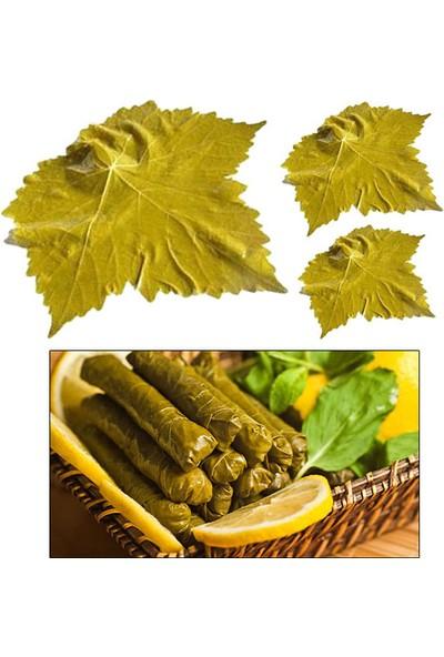 Ekotaze Tokat Erbaa Asma Bağ Yaprağı Vakum 500 gr