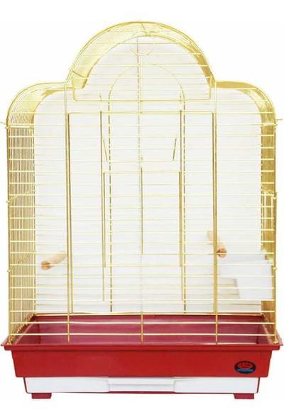 Dayang Papağan Eğitim Kafes 52X41X71