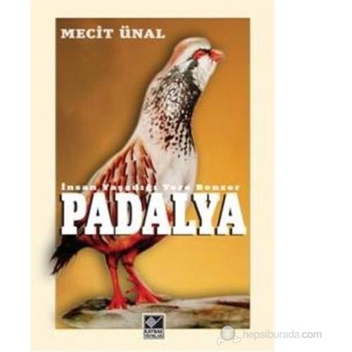 Padalya-Mecit Ünal