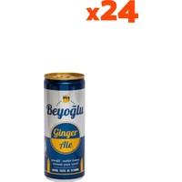 Beyoğlu Ginger Ale Gazoz 250 ml x 24
