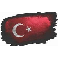 Sticker Atölyesi Türk Bayrağı Sticker - 18075 Renkli 6 x 10 cm