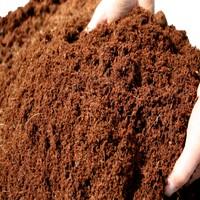 Toru Bahçe Cocopeat Hindistan Cevizi Torfu Lifi 20 Lt %100 Doğal Katkısız