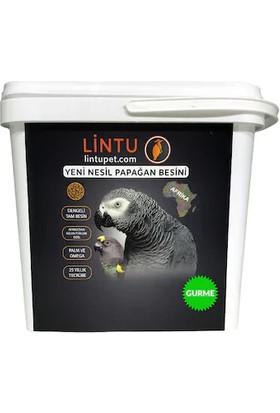 Lintu Afrika Gurme Papağan Besini 5 kg