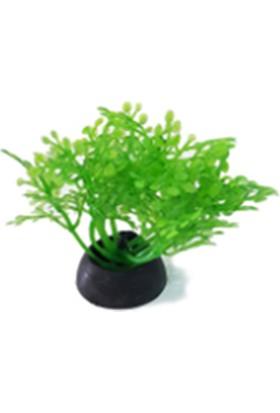 """Eurogold Plastik Bitki 5 cm 2"""""""