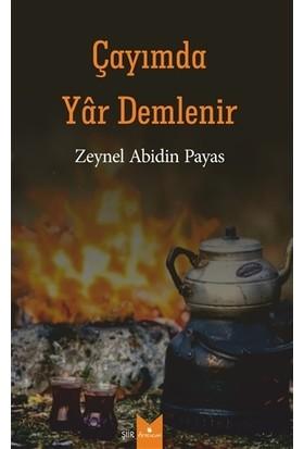 Çayımda Yar Demlenir - Zeynel Abidin Payas
