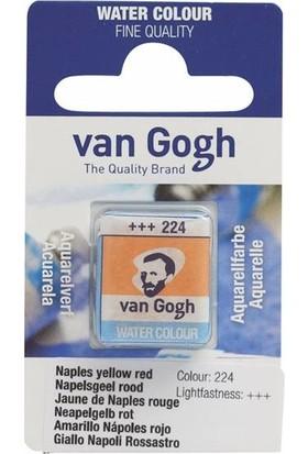 Van Gogh Tablet Sulu Boya Yedek Naples Yellow Red 224