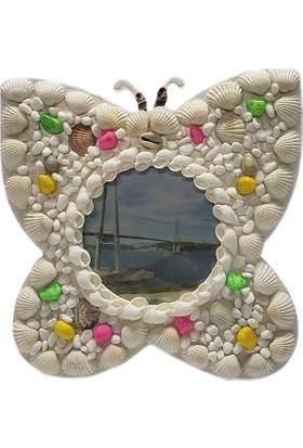 Mrç Dekoratif Deniz Kabuklu Kelebek Tasarım Albüm Çerçeve