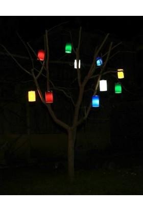 Alaçatı Ağaç Feneri Karışık 10'lu