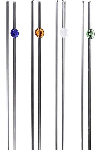 1200 Derece Dayanıklı Cam Pipet 20 cm Noktalı 4'lü Set Düz + Temizleme Fırçası