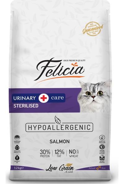 Felicia Az Tahıllı 12 kg Sterilised Somonlu Hypoallergenic Kedi Maması