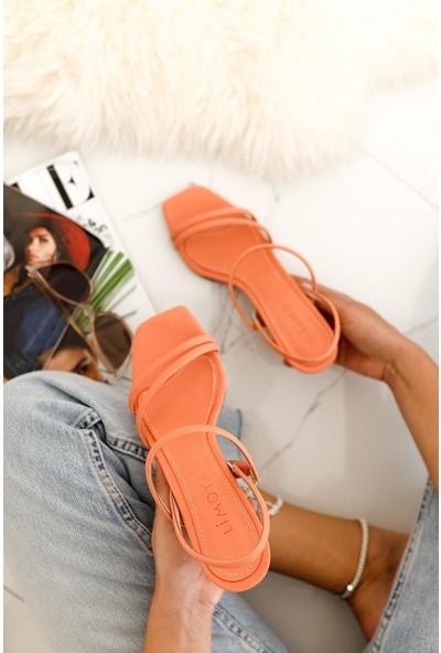 Limoya Hadleigh Kavun-İçi Rengi Bantlı Kısa İnce Topuklu Sandalet ( Açık Portakal )