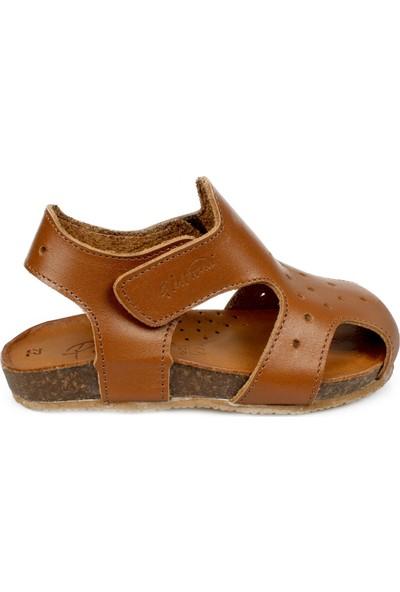 Piarmoni Msm Trend Sandals 2130 Taba Çocuk Sandalet