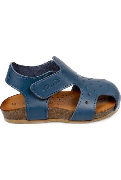 Piarmoni Msm Trend Sandals 2130 Mavi Çocuk Sandalet
