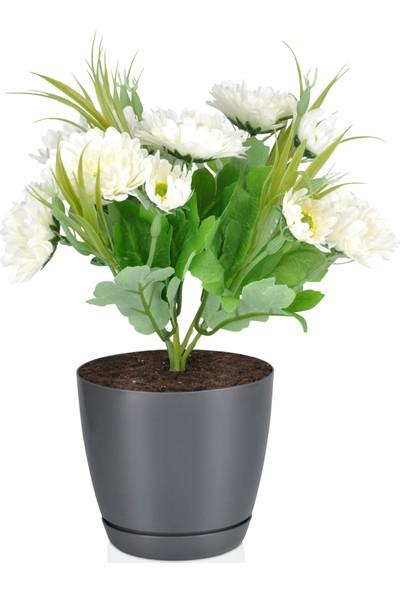 Favilla Floris Saksı Tabaklı 21 cm 4,5 Lt Gri 3'Lü