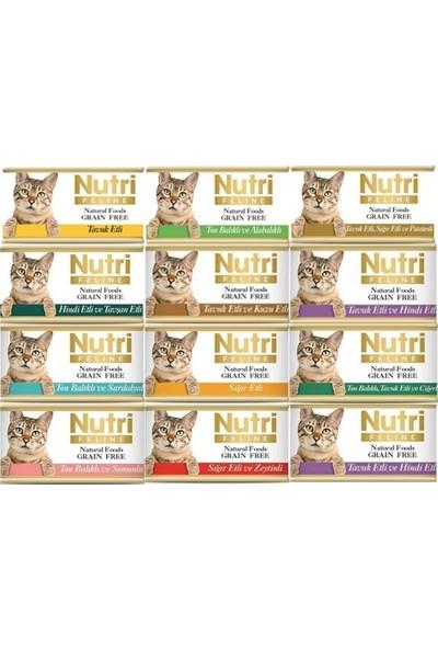 Nutri Feline Tahılsız Kedi Maması 12 'li Özel Paket Karışık