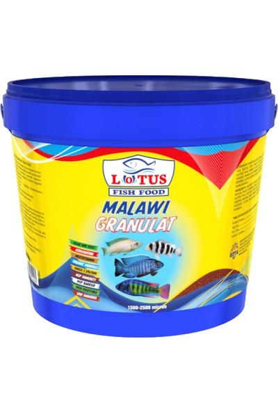 Lotus Malawi Granulat Yunus Sarı Prenses Ahli Ciklet Yüksek Protein Balık Yemi 3 kg