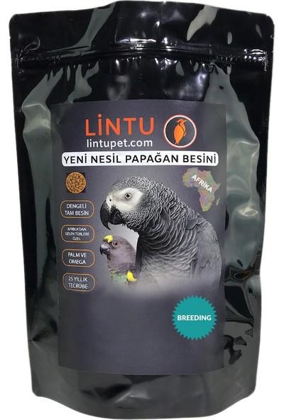 Lintu Afrika Breeding Papağan Üretim Besini 850 gr