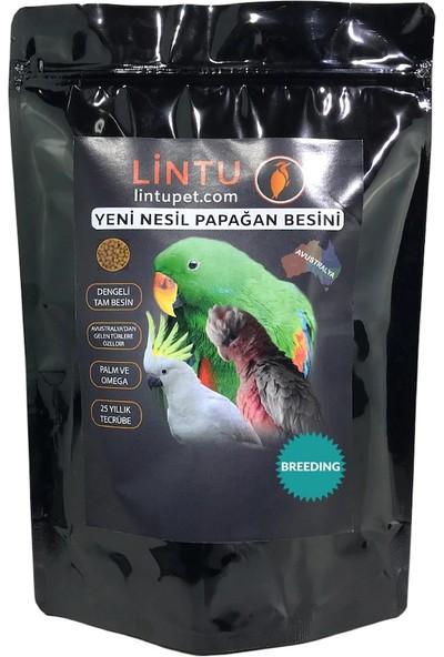 Lintu Avustralya Breeding Papağan Üretim Besini 850 gr