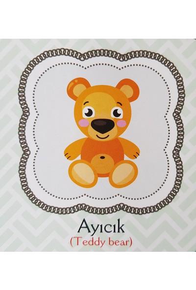 Kids Babies Oyuncaklarım Türkçe - İngilizce