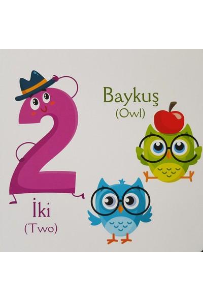 Kids Babies Sayılar Türkçe İngilizce