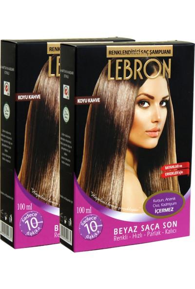 Lebron Renklendirici Saç Şampuanı 4.0 Karamel Koyu Kahve 8X25 200 ml