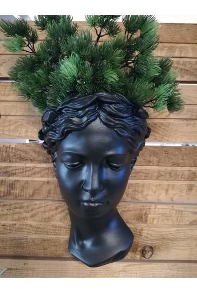 Balcony Flower Helen Duvar Saksılık Siyah 25 cm