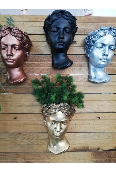Balcony Flower Helen Duvar Saksılık Bronz 25 cm