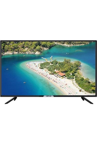 """Onvo OV39-5000 39"""" 99 Ekran Uydu Alıcılı HD LED TV"""