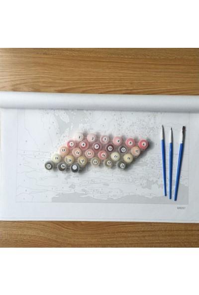 Hesaplı Aksesuar Kendin Yap Numaralı Tablo Seti Yağlı Boya ve Fırça Joker 40 x 50 cm