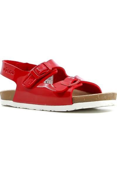 Vicco Kız Çocuk Sandalet Ayakkabı 20Y 321.360 Bk