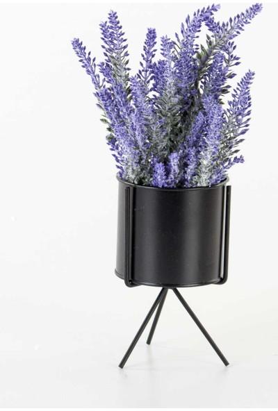 Euro Flora Ayaklı Metal Saksı Siyah 9,5 x 16 cm