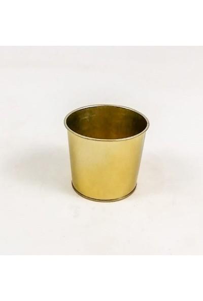 Fidan Burada Gold Metal Saksı 12 cm