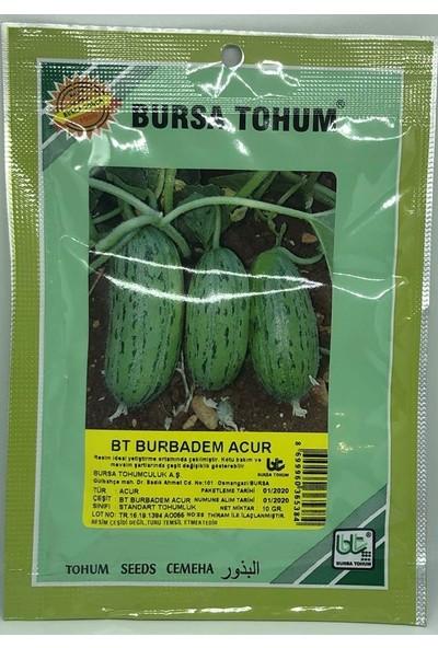 Bursa Tohum Badem Acur 10 Gr