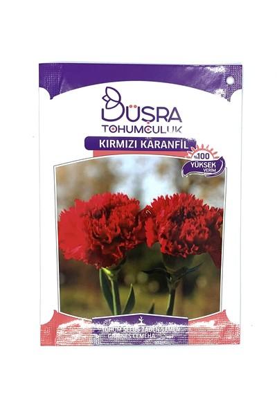 Çiçek Antalya Kırmızı Karanfil Tohumu