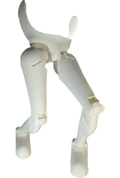 Ruhaynası Hareketli Bacaklar Eğitici Oyuncak