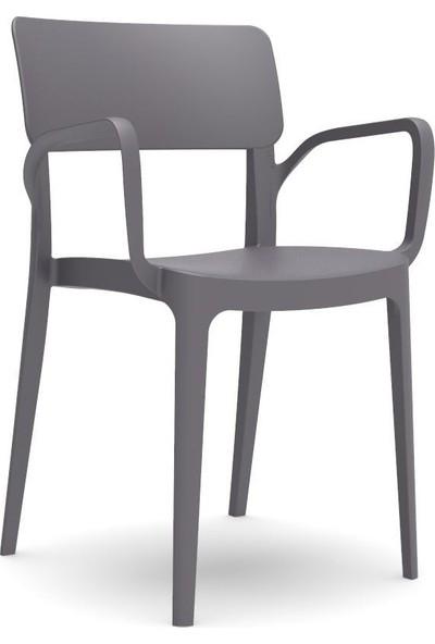 Novussi Sandalye Antrasit