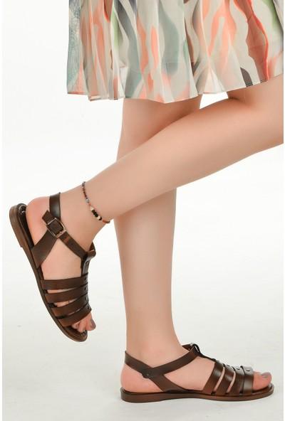 Ayakland 3250 Günlük Kemerli Kadın Sandalet Kahverengi