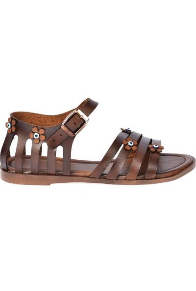 Ayakland 3260 Günlük Kemerli Kadın Sandalet Kahverengi