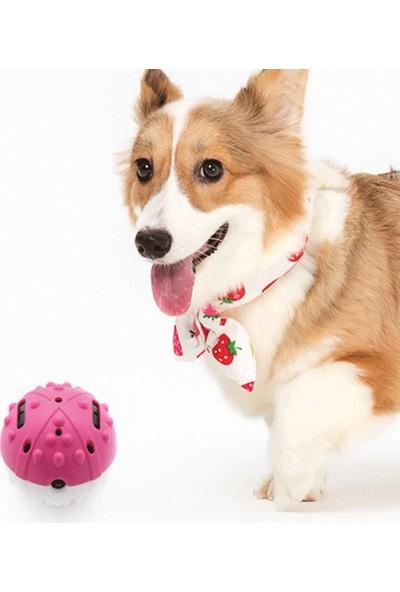 Yukka Köpek İçin Oyuncak Top Zıplatma Pilli Köpek Oyuncak Isırık Dayanıklı Oyuncak