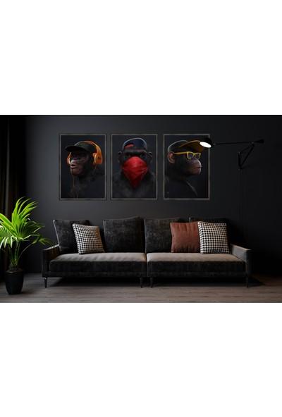 Çerçeve Home Üçlü Çerçeveli Poster Seti Üç Maymun