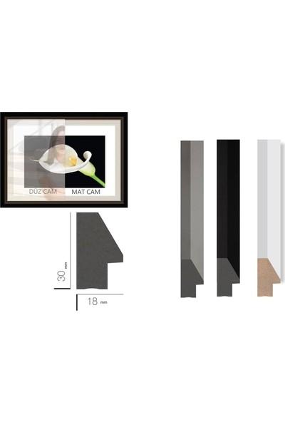 Çerçeve Home Üçlü Çerçeveli Poster Seti Abstract Rose & Women