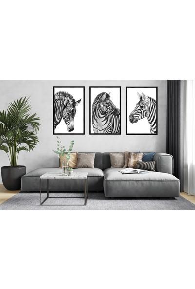 Çerçeve Home Üçlü Çerçeveli Poster Seti Zebras