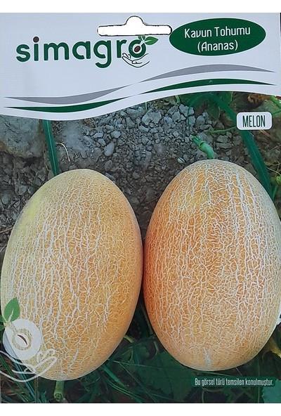 Mutbirlik Aroması Yüksek Ananas Kavun Tohumu-10 Gram