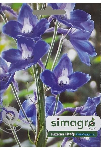 Mutbirlik Karışık Renkli Hazeran Çiçeği Tohumu-30 Adet